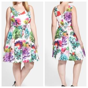 CITY CHIC succulent sweetie fit and flare dress 18